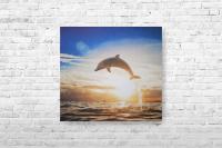"""Картина на холсте """"Дельфин"""" 50х45см"""