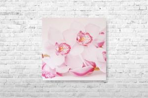"Картина на холсте ""Цветы"" 30х30см"