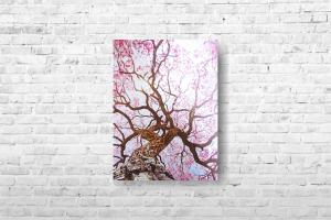 "Картина на холсте ""Дерево"" 40х52см"