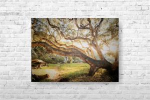 "Картина на холсте ""Дерево"" 67х50см"