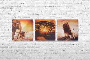 """Картина на холсте """"Африка"""" 90смх30см"""