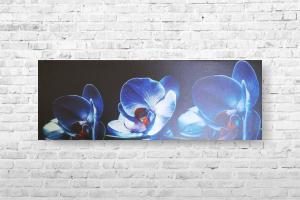 """Картина на холсте """"Орхидеи"""" 85х30см"""
