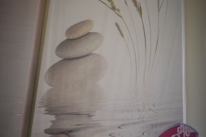 "Картина на холсте ""Гармония"" 30х65"